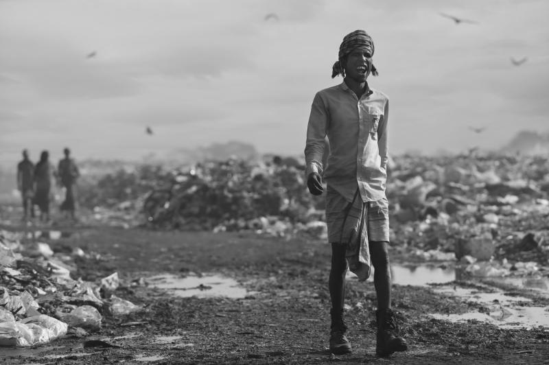 Life in the landfill