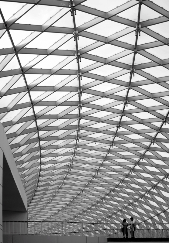 Lines and Curves2