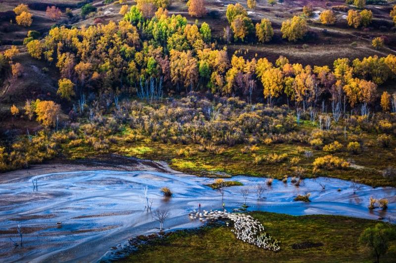 Herding Song of Autumn