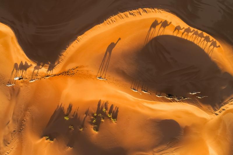 Eye on the desert