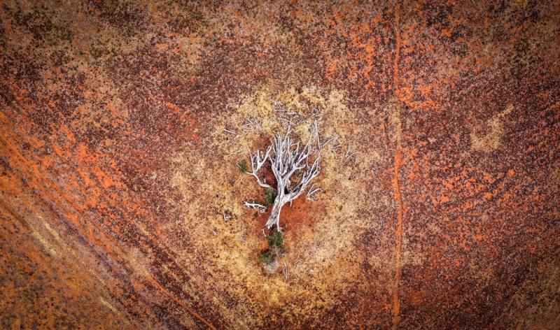 AUSTRALIA'S DROUGHT LANDSCAPE #9