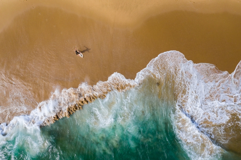 Skimboarding at the Wedge